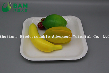 Fully Biodegradable Dividing Compostable Sugarcane Plant Fiber Bakery Takeaway Food Package Square Plate for Dessert Cake