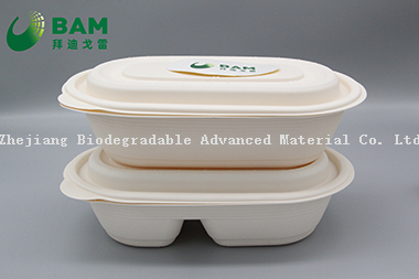 Food Grade Fully Biodegradable Compostable Sugarcane Cornstarch Plant Fiber Takeaway Canteen Food Containers for Salad Fast-Food