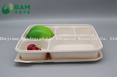 100% Biodegradable 5 Compartment Disposable Compostable Corn Starch Takeaway Canteen Food Containers for Fast-Food